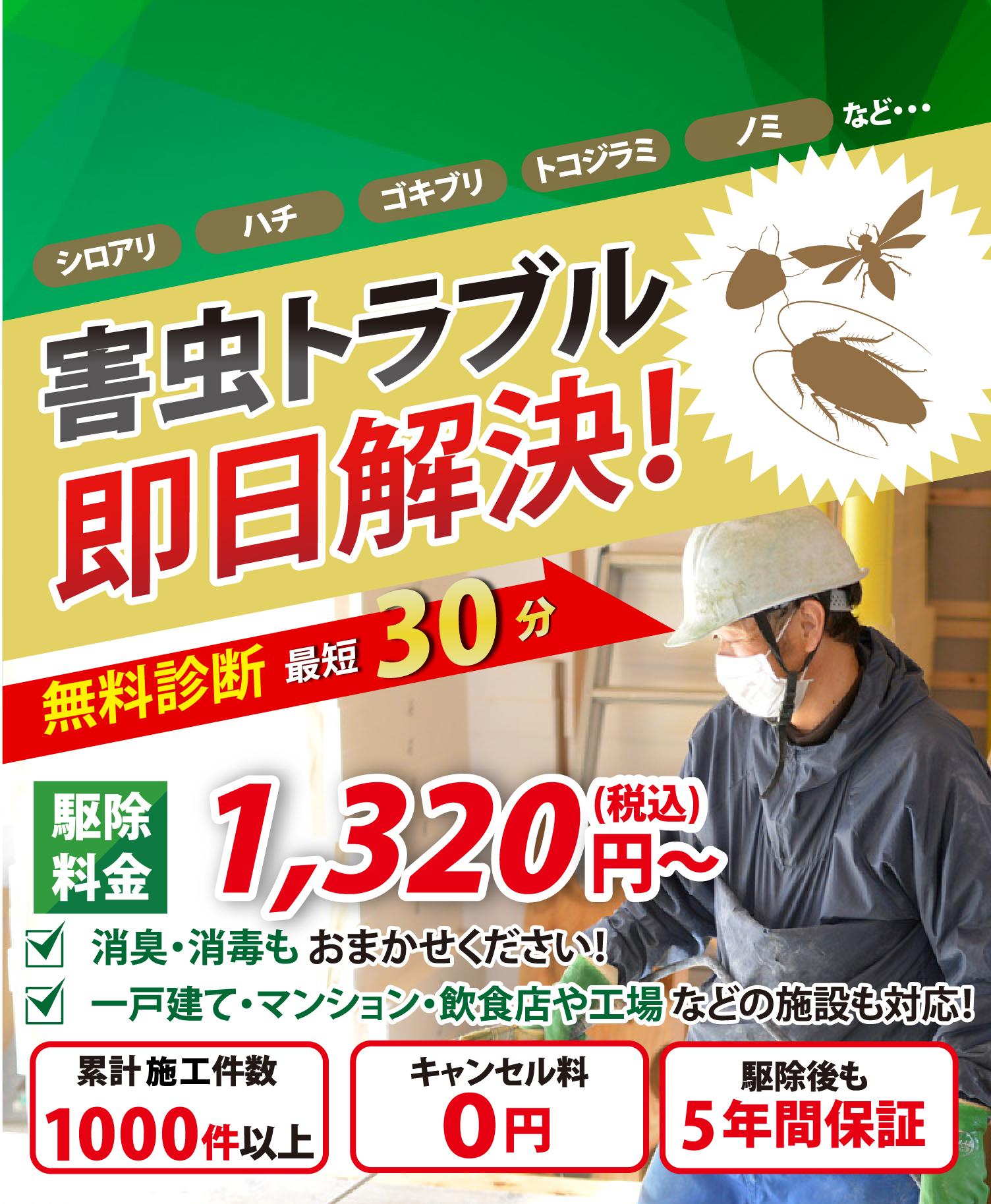 害虫トラブル即日解決! 無料診断最短30分 駆除料金8,000円~